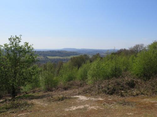 View across St Martha's